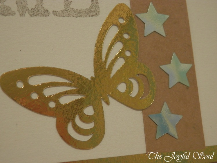 Bronzed Butterfly 2
