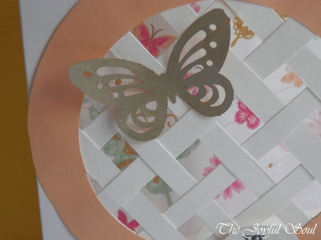 Peek-A-Butterfly 2