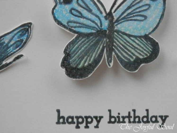 Blue Butterfly Birthday 2
