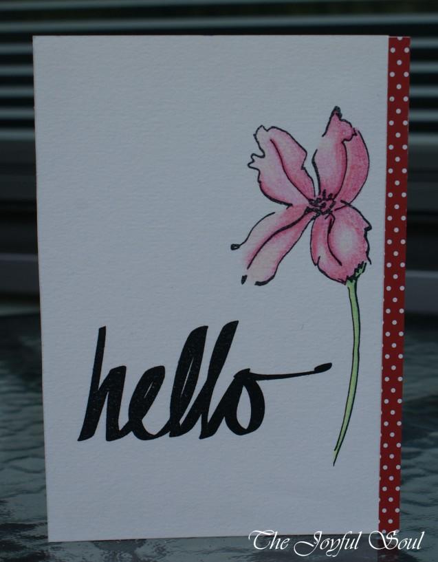 Hello Pink Flower
