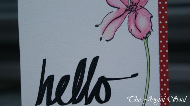 Hello Pink Flower 2