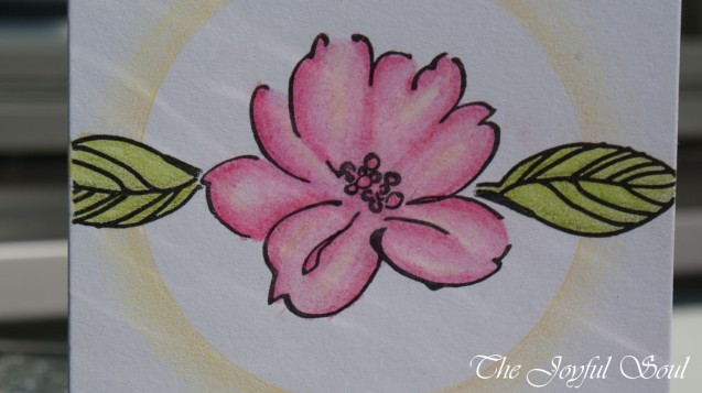Halo Flower 2