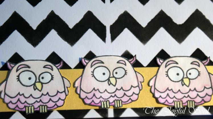 Three Wise Owls 3